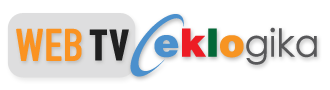 Shane Fitzpatrick, Head of Global eCommerce, First Data | eklogika webTV